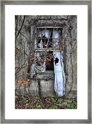 Tattered Curtain Fall '09 No.3 Framed Print by Sari Sauls