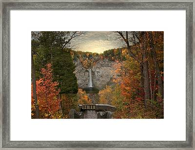 Taughannock Foliage Framed Print by Jessica Jenney
