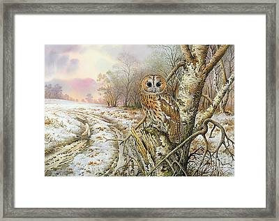 Camouflage Framed Print featuring the painting Tawny Owl by Carl Donner