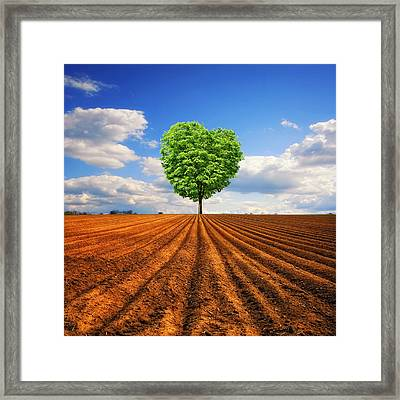 Tender Nature Framed Print by Philippe Sainte-Laudy Photography