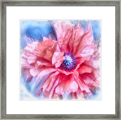 Tenderness Framed Print by Angelina Vick