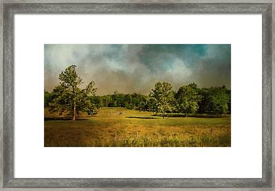 Tennessee Countryside Framed Print by Jai Johnson