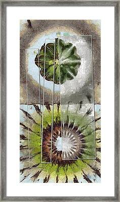 Tequila Threadbare Flowers  Id 16165-172144-89891 Framed Print by S Lurk