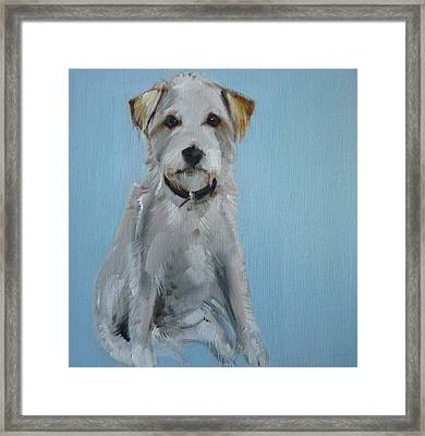 Terrier Framed Print by Sally Muir