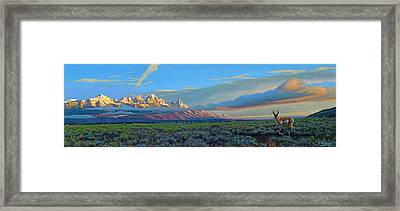 Teton Morning Framed Print by Paul Krapf
