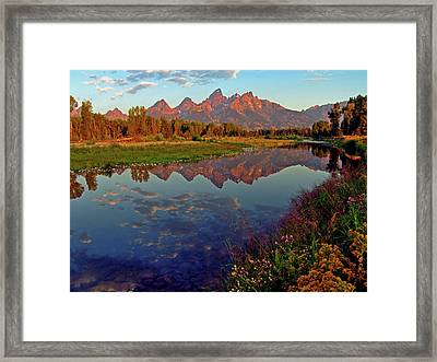 Teton Wildflowers Framed Print by Scott Mahon