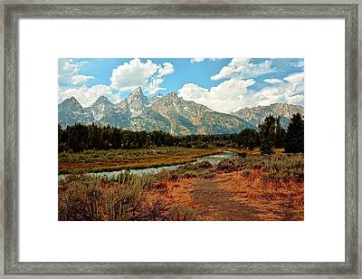Tetons Grande 5 Framed Print by Marty Koch