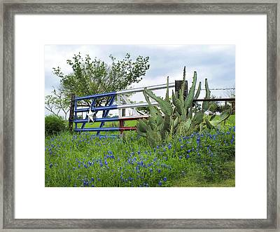 Texas And Bluebonnets Framed Print by David and Carol Kelly