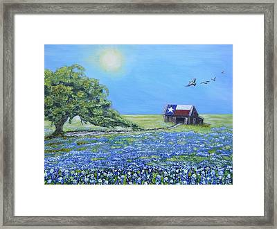 Texas Barn And Live Oak Framed Print by Melissa Torres