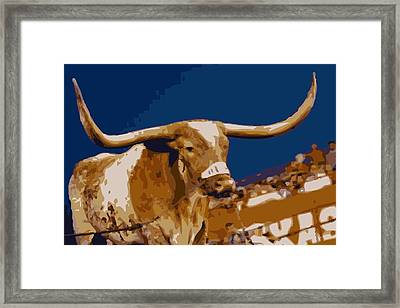 Texas Bevo Color 16 Framed Print by Scott Kelley