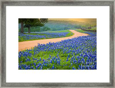 Texas Country Road Framed Print by Inge Johnsson