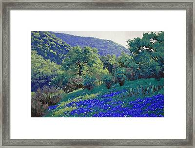 Texas Hill Country Blues Framed Print by Russell Cushman