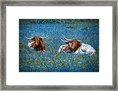 Texas In Blue Framed Print by Linda Unger