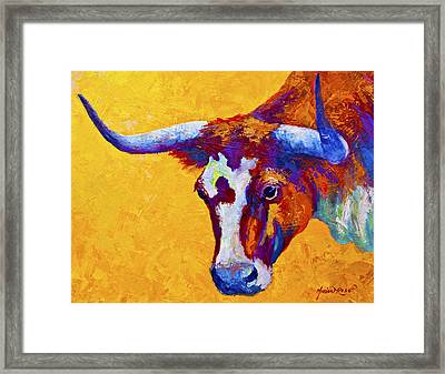 Texas Longhorn Cow Study Framed Print by Marion Rose