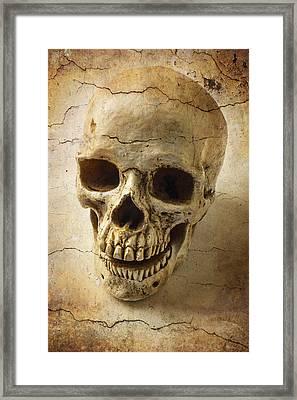 Textured Skull Framed Print by Garry Gay