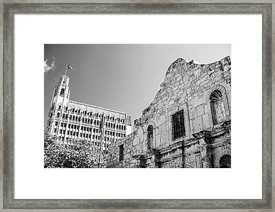 The Alamo - San Antonio - Black And White Framed Print by Gregory Ballos