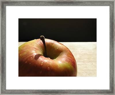 The Apple Stem Framed Print by Kim Pascu