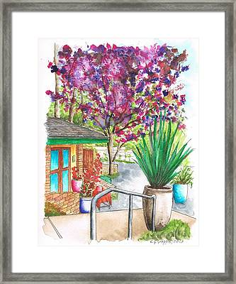 The Arboretum Gift Shop In Arcadia-california Framed Print by Carlos G Groppa
