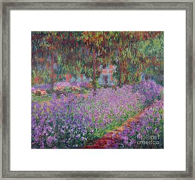 The Artists Garden At Giverny Framed Print by Claude Monet