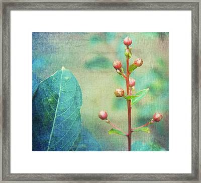 The Beauty Of Nature Framed Print by Kathy Bucari