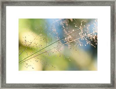 The Beauty Of The Earth. Natural Watercolor Framed Print by Jenny Rainbow