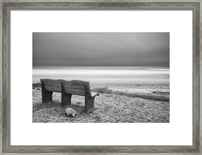 The Bench Framed Print by Larry Marshall