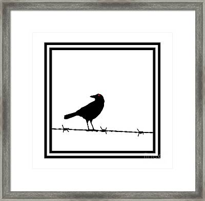 The Black Crow Knows T-shirt Framed Print by Edward Fielding