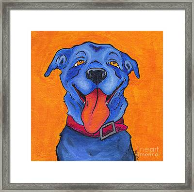 The Blue Dog Of Sandestin Framed Print by Robin Wiesneth