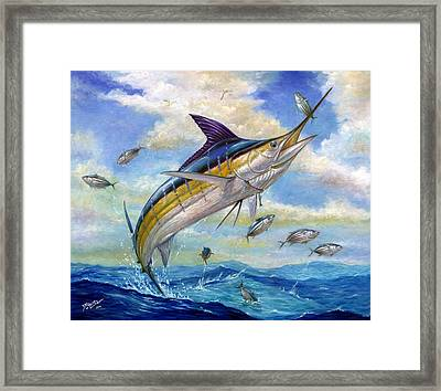 The Blue Marlin Leaping To Eat Framed Print by Terry  Fox