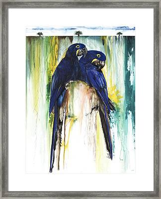 The Blue Parrots Framed Print by Anthony Burks Sr