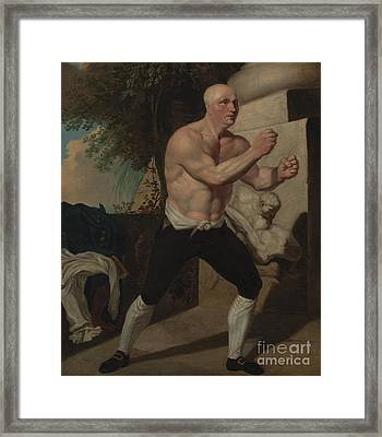 The Boxer Framed Print by Celestial Images