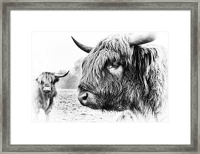 The Boyz Framed Print by Tim Gainey
