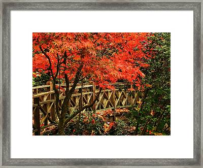 The Bridge In The Park Framed Print by Connie Handscomb