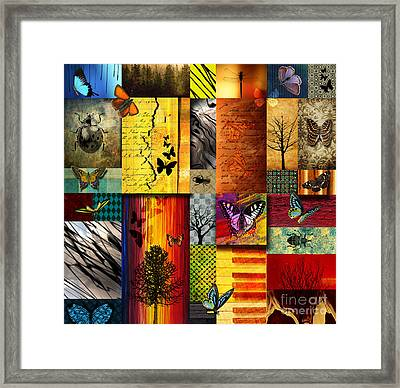 The Butterfly Effect Framed Print by Ramneek Narang