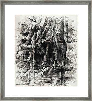 The Cage Framed Print by Rachel Christine Nowicki
