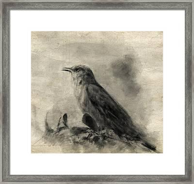 The Call Of The Mockingbird Framed Print by Jai Johnson