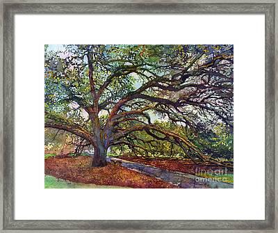 The Century Oak Framed Print by Hailey E Herrera