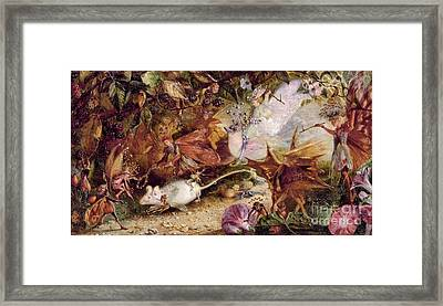 The Chase Of The White Mouse Framed Print by John Anster
