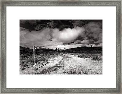 The Chase  Framed Print by Ron Evans