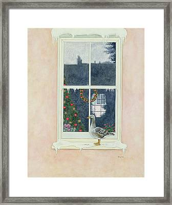 The Christmas Goose  Framed Print by Ditz