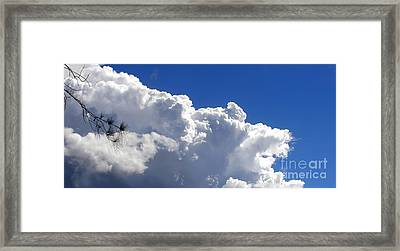 The Cloud Framed Print by Kaye Menner