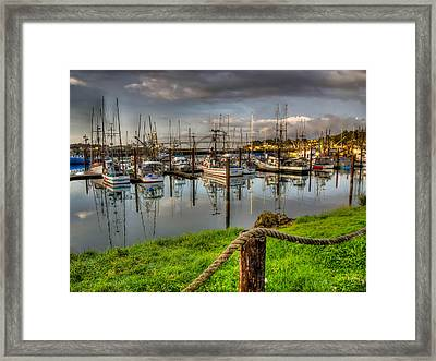 The Cod Father Framed Print by Thom Zehrfeld