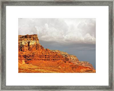 The Condor's Land Framed Print by Christine Till