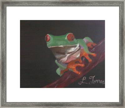 The Coqui Framed Print by Lourdes Torres