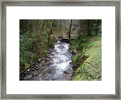 The Creek Framed Print by Laurie Kidd