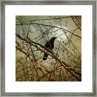 The Crow And The Moon Framed Print by Theresa Tahara