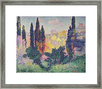 The Cypresses At Cagnes Framed Print by Henri-Edmond Cross