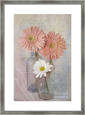 The Daisies Framed Print by Cindi Ressler