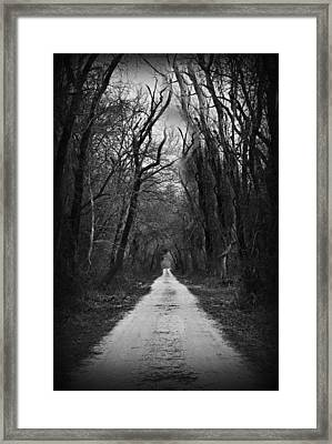 The Dark Road Framed Print by Darin Bokeno