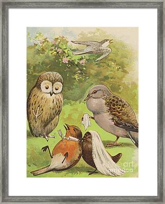 The Death Of Cock Robin Framed Print by English School